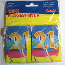 Minivlaglijn 21 jaar